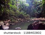 curtis falls in mount tamborine | Shutterstock . vector #1188402802