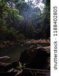 curtis falls in mount tamborine | Shutterstock . vector #1188402805