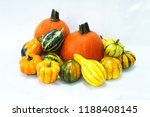 Pumpkins And Gourds Background