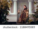 sleeping beauty princess... | Shutterstock . vector #1188495085