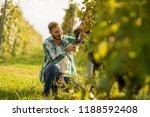 handsome young man working in... | Shutterstock . vector #1188592408