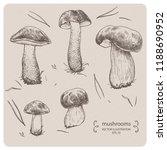 edible mushrooms   hand drawn... | Shutterstock .eps vector #1188690952