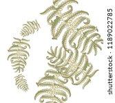fern frond herbs  tropical... | Shutterstock .eps vector #1189022785