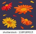 vector illustration of... | Shutterstock .eps vector #1189189015
