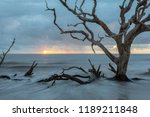 Beautiful Sunrise At Driftwood...