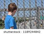 young faceless boy overlooking... | Shutterstock . vector #1189244842