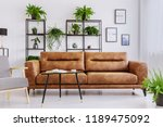 armchair next to brown leather... | Shutterstock . vector #1189475092