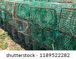 Fishing Traps For Fish And...