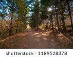 road in an autumn forest with... | Shutterstock . vector #1189528378