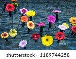 autumn outdoor floral...   Shutterstock . vector #1189744258