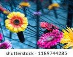autumn outdoor floral...   Shutterstock . vector #1189744285