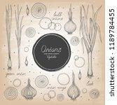set of different varieties of... | Shutterstock .eps vector #1189784455