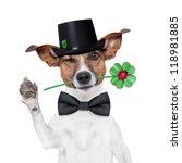 Good Luck Chimney Sweeper Dog...