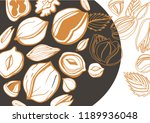 isolated vector hazelnut on a... | Shutterstock .eps vector #1189936048