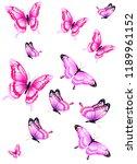 beautiful pink butterflies ... | Shutterstock . vector #1189961152