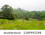 forested mountain slope in low... | Shutterstock . vector #1189992298