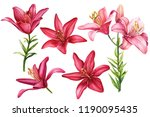 Elegant Lilies  Set Of Red And...
