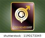 gold emblem with gender... | Shutterstock .eps vector #1190173345
