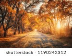 autumn forest with country road ... | Shutterstock . vector #1190242312