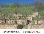 the singing terraces  gorodnee... | Shutterstock . vector #1190329768