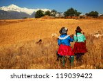 harvesting in cordiliera negra  ... | Shutterstock . vector #119039422