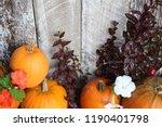 pumpkins on wood plank...   Shutterstock . vector #1190401798