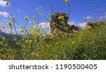 pergamon museum  ruins of... | Shutterstock . vector #1190500405