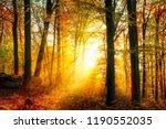 enchanting autumn light in a... | Shutterstock . vector #1190552035
