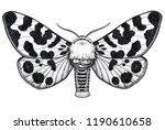 hand drawn butterfly tattoo.... | Shutterstock . vector #1190610658