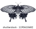 butterfly tattoo design.... | Shutterstock . vector #1190610682