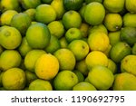 fresh and juicy citrus fruits... | Shutterstock . vector #1190692795