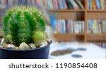 cactus with bookshelf... | Shutterstock . vector #1190854408
