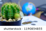 cactus with globe background... | Shutterstock . vector #1190854855