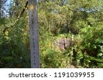 public footpath this way sign | Shutterstock . vector #1191039955
