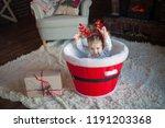 beautiful baby on christmas...   Shutterstock . vector #1191203368