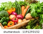 a collection of fresh and... | Shutterstock . vector #1191293152