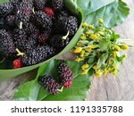 mulberries and green leaf on... | Shutterstock . vector #1191335788