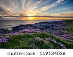 a beautiful sunset at... | Shutterstock . vector #119134036