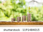 step of coins stacks with tree... | Shutterstock . vector #1191484015