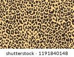 Leopard Seamless Pattern....