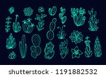collection of succulent plants  ... | Shutterstock .eps vector #1191882532