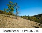 scorched autumn landscape ... | Shutterstock . vector #1191887248
