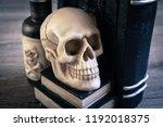 halloween decoration spell book ... | Shutterstock . vector #1192018375