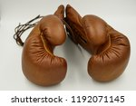 vintage brown boxing grove for... | Shutterstock . vector #1192071145