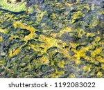 bolivia  salar de uyuni  aguas...   Shutterstock . vector #1192083022