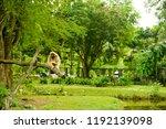 chonburi thailand 26 may 2018   ... | Shutterstock . vector #1192139098