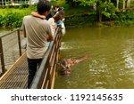 chonburi thailand 06 may 2018   ... | Shutterstock . vector #1192145635