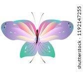 beautiful pink butterflies... | Shutterstock . vector #1192147255