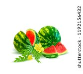 fresh  nutritious and tasty... | Shutterstock .eps vector #1192156432