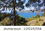 mediterranean forest sea coast  | Shutterstock . vector #1192192558